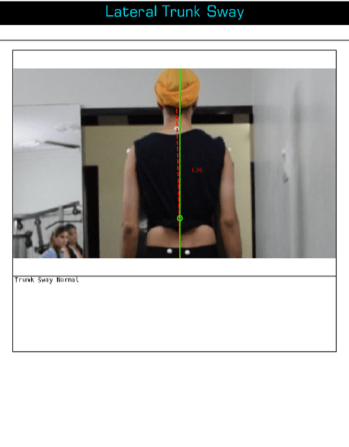 Gait Analysis additional data